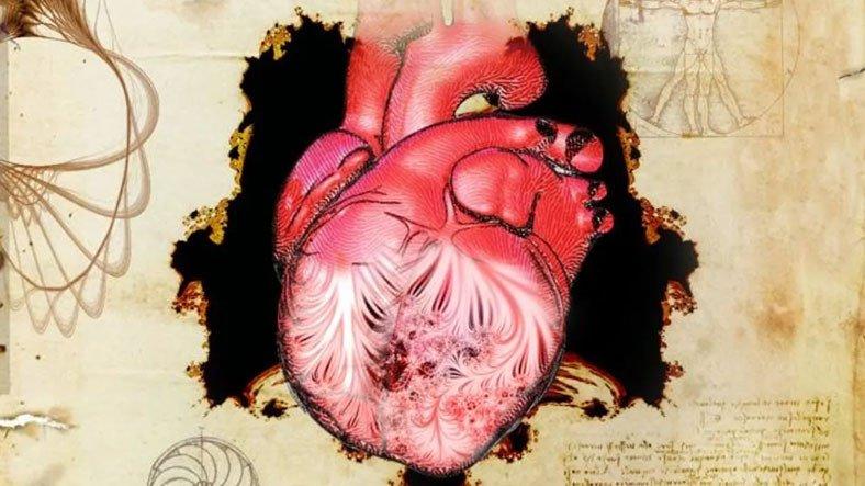 Leonardo da Vinci'nin 500 Yıl Önce Çizdiği Bir Kalp Parçasının İşlevi Ancak Bugün Keşfedildi