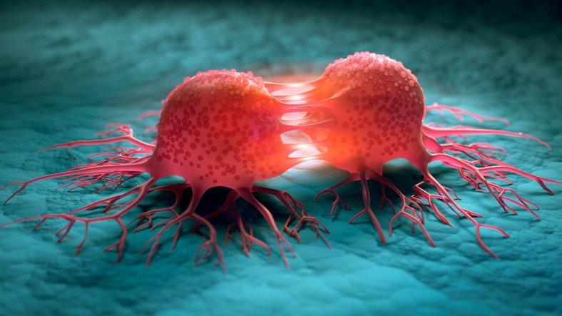 Araştırmacılar, Tümör Hücreleriyle Normal Hücreleri Farklılaştırabilen Araç Geliştirdi